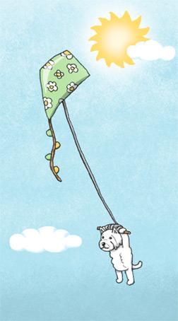Highland Terrier using a kite as a hang-glider